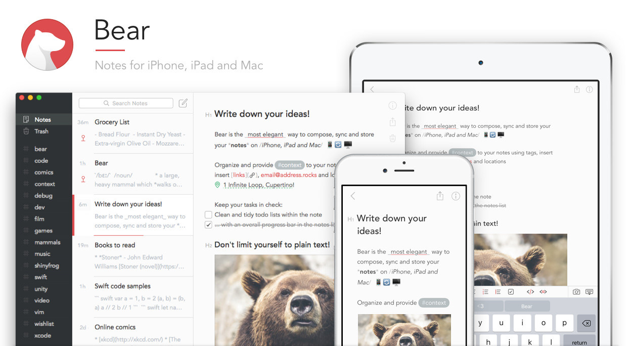 bear notes for iphone ipad and mac